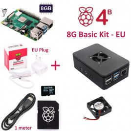RPi 4B 8G Basic Kit-EU Plug(w RPI4B8G)